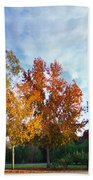 Liquid Amber Trees Beach Towel
