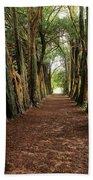 Lismore, County Waterford, Ireland Beach Towel