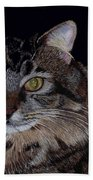 Little Girl - Maine Coon Cat Painting Beach Towel