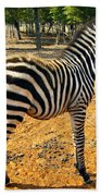Little Stripes Beach Towel