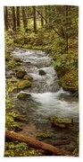 Little Zig Zag Stream Beach Towel