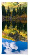 Lizard Lake Reflections Beach Towel