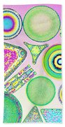 Lm Of Fossilized Diatoms Beach Towel