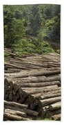 Logs In Logging Area, Danum Valley Beach Towel