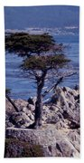 Lone Cypress By The Sea Beach Towel