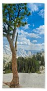 Lone Pine At Half Dome Beach Towel