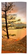 Lone Tree At Ellison Park Beach Towel