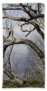 Lone Tree Beach Towel