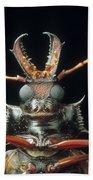 Longhorn Beetle Macrodontia Cervicornis Beach Towel