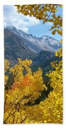 Long's Peak And The Keyboard Of The Winds Amidst Aspen Gold Beach Towel by Margaret Bobb