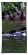 Loons With Twins 2 Beach Towel