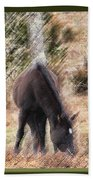 Lost In The Woods Beach Towel