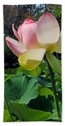 Lotus Lily Standing Tall Beach Towel