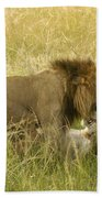 Love In The Wild Beach Towel