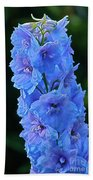 Lovely Larkspur Blue Beach Towel