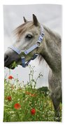 Lulu In The Poppy Field Beach Towel