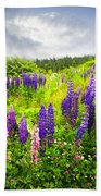 Lupin Flowers In Newfoundland Beach Towel