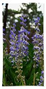 Lupine Patch Beach Towel