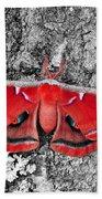 Madam Moth - Red White And Black Beach Towel