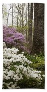 Magical Azaleas At Callaway Botanical Gardens Beach Towel