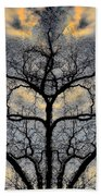 Magical Tree Beach Towel