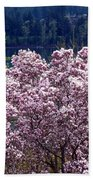 Magnolia By The Lake Beach Towel