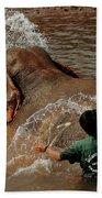 Bathing An Elephant Laos Beach Towel