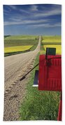 Mailbox On Country Road, Tiger Hills Beach Towel