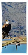 Majestic Eagle Beach Sheet