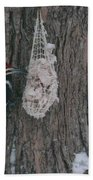 Male And Female Pileated Woodpeckers Beach Towel