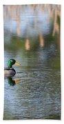 Mallard - Duck - Lonely Guy Beach Towel