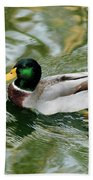 Mallard Duck Beach Towel