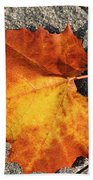 Maple Leaf In Fall Beach Towel