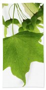 Maple Leaves And Seeds Beach Towel