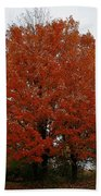 Maples In The Meadow Beach Towel