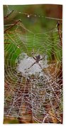 Marsh Spider Web Beach Towel