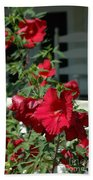 Martha's Vineyard Red Hibiscus And Porch Beach Towel