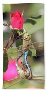 Mating Dragonfly Beach Towel