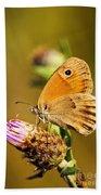 Meadow Brown Butterfly  Beach Sheet