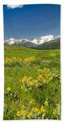 Meadow Landscape Beach Towel