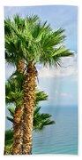 Mediterranean Landscape Beach Towel