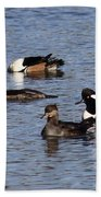 Mergansers After The Rain Beach Towel