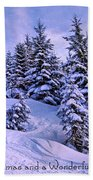 Merry Christmas And A Wonderful New Year Beach Towel