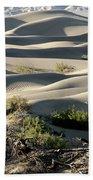 Mesquite Sand Dunes Beach Towel