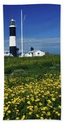 Mew Island, County Down, Ireland Beach Towel