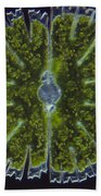 Micrasterias Sp. Algae Lm Beach Towel by M. I. Walker
