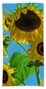 Mid Summer Dreams Beach Towel