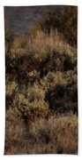 Midnight Sage Brush Beach Towel