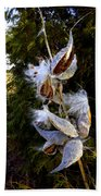 Milkweed Breeze Beach Towel