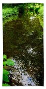 Mill Pond Stream In Green Beach Towel